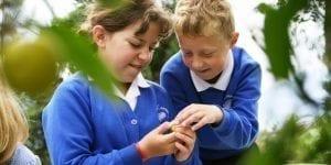 school children examining leaves eden project